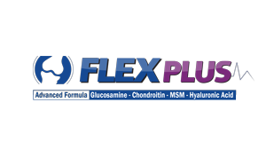 Logo-FELEX-PLUS-final